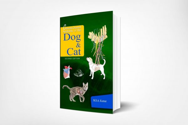 170 Clinically-Oriented-Anatomy-of-the-Dog-and-Cat-2nd-Edition