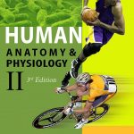 Human-Anatomy-Physiology-II-3rd-Edition.jpg